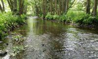 Vom Flussbett auf den Heuboden des Selketals